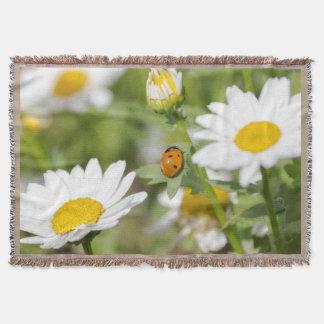 Mariquita en una manta del tiro del jardín de la