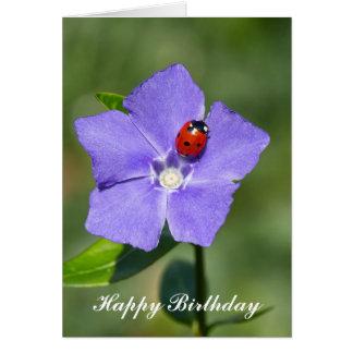 Mariquita hermosa en tarjeta de cumpleaños del