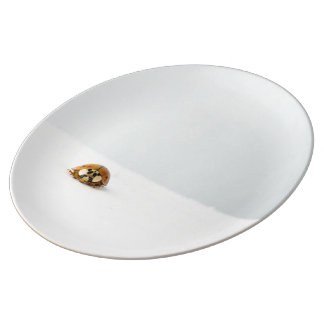 Mariquita perdida plato de cerámica
