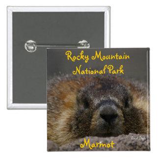 Marmota en el parque nacional rocoso de Mountian Chapa Cuadrada