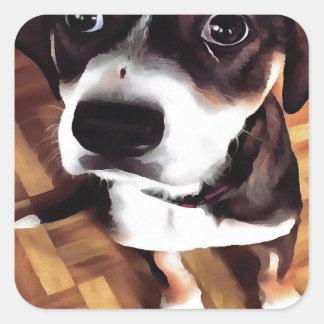 Marty el perro observado conmovedor pegatina cuadrada