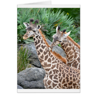 Masaje de la jirafa tarjeta de felicitación