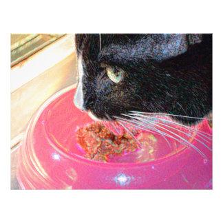 mascota animal del gato de la cabeza del rosa de tarjetas informativas