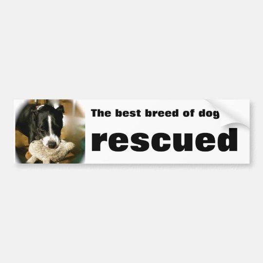 Mascota del rescate pegatina para coche