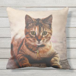 Mascota joven lindo del gatito del gatito del gato cojín de exterior