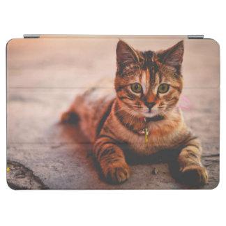 Mascota joven lindo del gatito del gatito del gato cover de iPad air