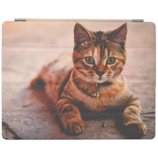 Mascota joven lindo del gatito del gatito del gato cubierta de iPad