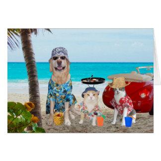 Mascotas en la playa en camisetas hawaiano tarjeta de felicitación