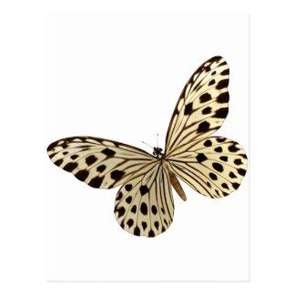 Materia de niños de la mariposa postal