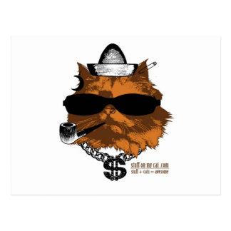 Materia en mi gato - kewl 2 postal