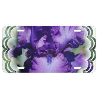 Matrícula Iris barbudo púrpura