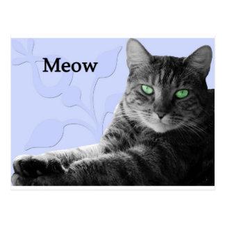 Maullido del gato de Tabby Postal