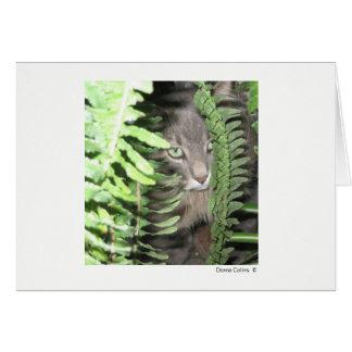 Máximo el gato #2 tarjeta pequeña