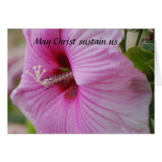 Mayo Cristo nos sostiene Felicitación