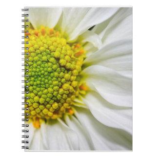 Medio cuaderno de la margarita