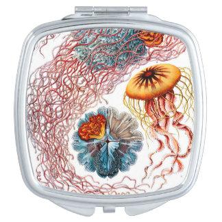 Medusas de Ernst Haeckel Discomedusae Espejo Compacto