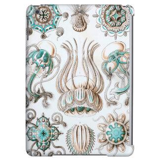 ¡Medusas de Ernst Haeckel Narcomedusae!