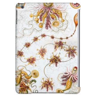 Medusas de Ernst Haeckel Siphonophorae