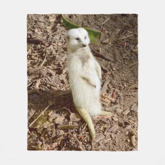 Meerkat blanco, manta media del paño grueso y