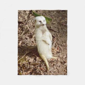 Meerkat blanco, pequeña manta del paño grueso y