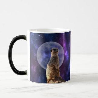 Meerkat en el claro de luna, taza de café mágica