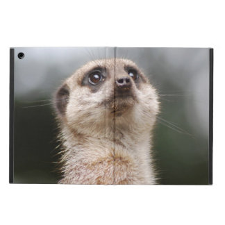 Meerkat Funda Para iPad Air