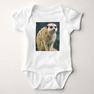 Meerkat lindo en la atención, parque zoológico de body para bebé