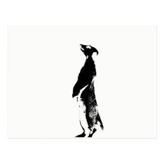 Meerkat negro y blanco - derecho - postal