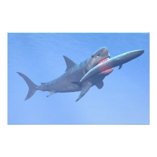 Megalodon que come una ballena papelería