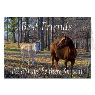 Mejores amigos caballo y tarjeta de felicitación