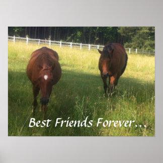 Mejores amigos para siempre poster