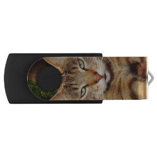 Memoria USB agujereada del gato del gatito