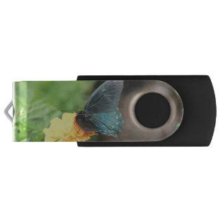 Memoria USB azul del verano del Coreopsis del