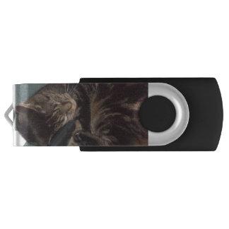 Memoria USB de plata juguetona 16GB de Dave
