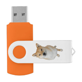Memoria USB del eslabón giratorio de Barkley 16 GB