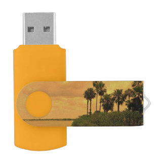Memoria USB Ensueño de la palmera