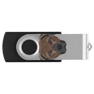 Memoria USB Perro Brown Labrador del ilustracion