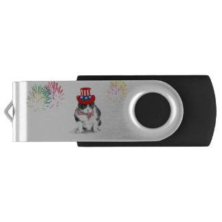 Memoria USB que ofrece a Felix el gato