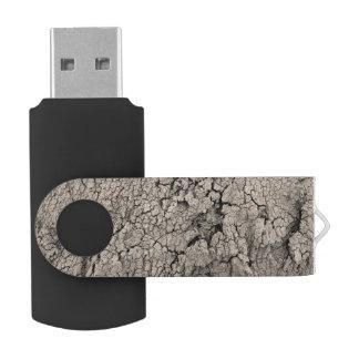 Memoria USB Textura fresca de la tierra agrietada