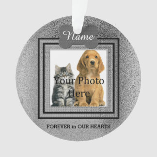 Memorias perfectas de plata del perro o del gato adorno