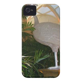 Mercancía de la acción de gracias Case-Mate iPhone 4 protector