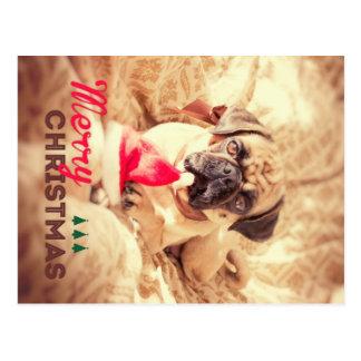 Merry Christmas Pug Tarjeta Postal