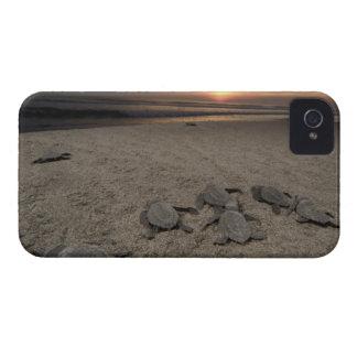 México, Chiapas, investigación de Boca del Cielo T iPhone 4 Case-Mate Funda