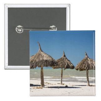 México, península del Yucatán, Progreso. Paja Chapa Cuadrada
