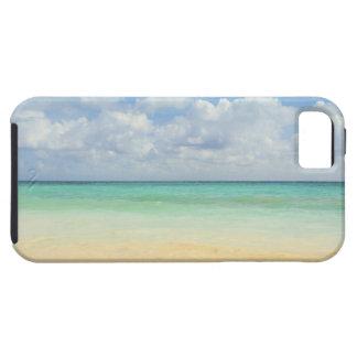 México, Playa del Carmen, paisaje marino 2 iPhone 5 Case-Mate Coberturas