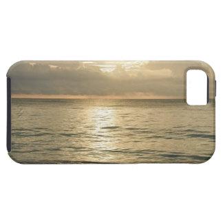 México, Playa del Carmen, paisaje marino 3 iPhone 5 Case-Mate Protectores