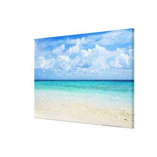 México, Playa del Carmen, playa tropical Impresiones En Lienzo Estiradas