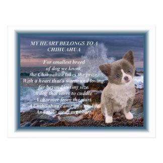 Mi corazón pertenece a un poema de la chihuahua postal