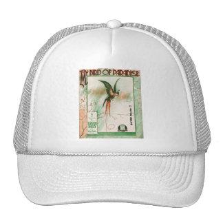Mi cubierta de la hoja de música del vintage de la gorras