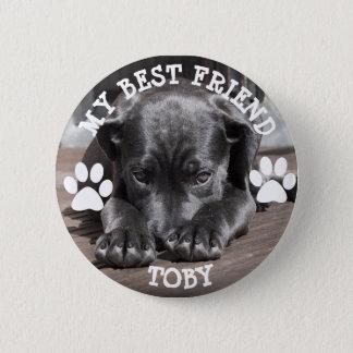 Mi mejor amigo, botón de la foto del perro de